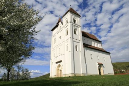 Biserica Herina, BN1